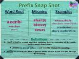 acerb- prefix snap shot