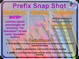 acu- Prefix Snap Shot