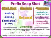 amic-, -imic- Prefix Snap Shot