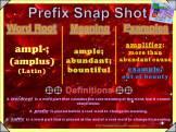 ampl- Prefix Snap Shot