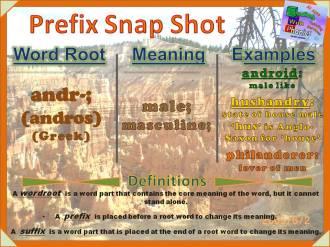 andr- Prefix Snap Shot