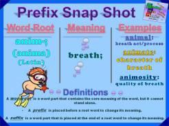 anim- Prefix Snap Shot