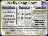 archae-, arche- Prefix Snap Shot