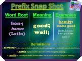 bon-prefix-snap-shot
