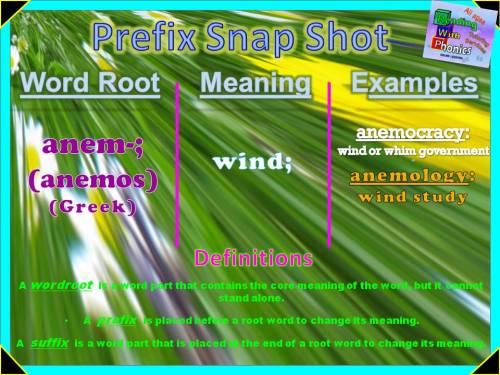 anem- Prefix Snap Shot