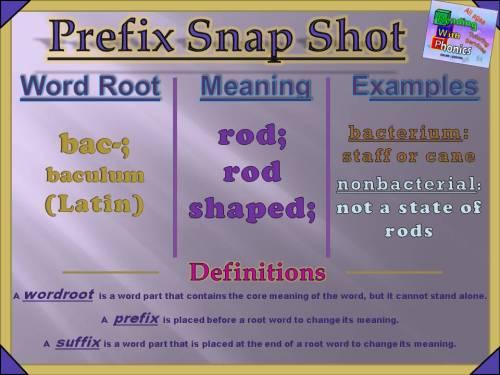 bac- Prefix Snap Shot