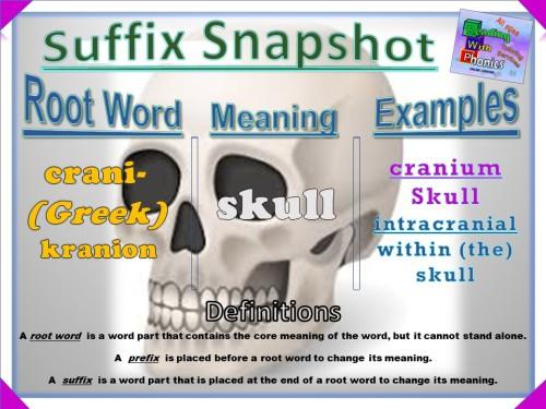 crani- Prefix Snapshot